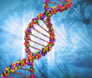 Het DNA van Het Nieuwe Werken