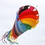 Het Nieuwe Werken vraagt om alle kleuren van de regenboog: De organisatie (1)