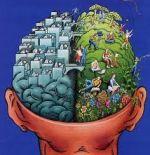 Het Nieuwe Werken behoeft inzet van beide hersenhelften