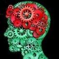 Behaviorisme en Het Nieuwe Werken