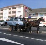 Paard voor wagen spannen en Het Nieuwe Werken