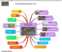 Programma dashboard mindmap visualisatie