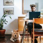 Waarom een VPN onmisbaar is voor het Nieuwe Werken