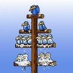 Bedrijfshierarchie