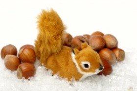 De eekhoorn en Het Nieuwe Werken